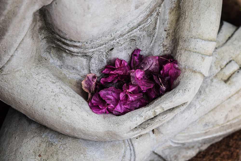 Hojas de inspiración. Llaves para experimentar la meditación.