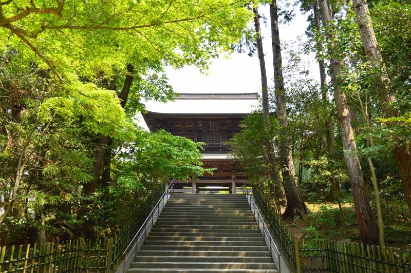 Templo en Japón, entre el bosque verde.
