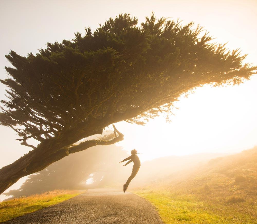 Persona saltando debajo de un árbol en el amanecer.