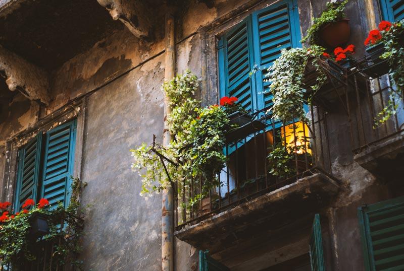Balcones con muchas plantas.