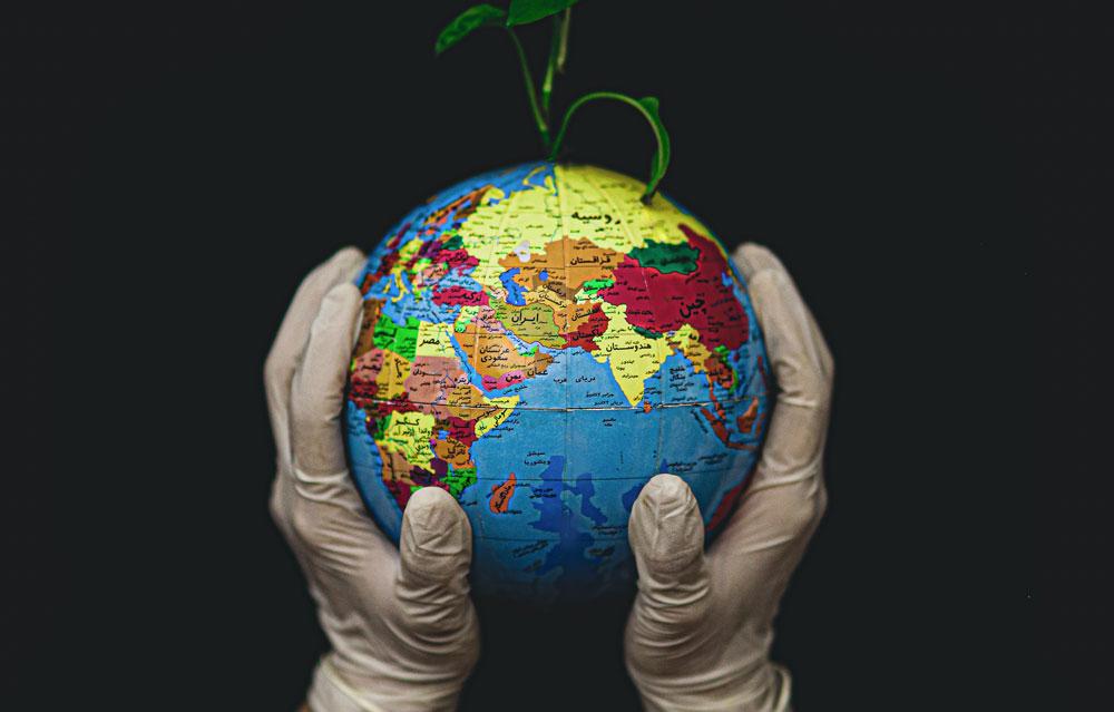 Manos tomando la Tierra y una planta creciendo de ella.