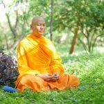 Luang Phi Pasura meditando en un parque verde.
