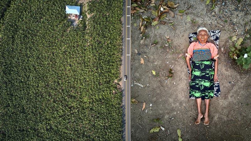 Mujer indígena acostada en el asfalto, haciendo contraste con el verde.